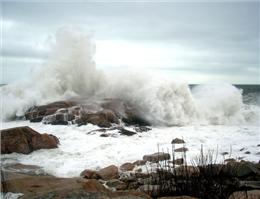 دریای عمان طوفانی شد