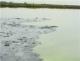 رفع آلودگی نفتی در دریا با کشف ماده ی جدید