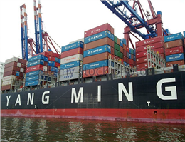 Yang Ming suffers second-quarter loss