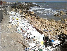 بنادر چابهار و کنارک در خطر دفع غیر اصولی زباله