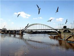 هوای مناطق ساحلی خوزستان در شرایط سالم قرارگرفت