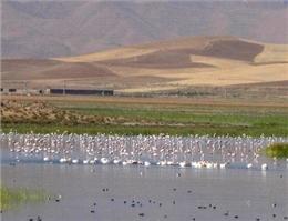 بازدید معاون دبیرکل سازمان ملل از پارک ملی دریاچه ارومیه