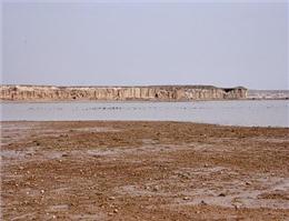 ورود آب به تالاب هامون