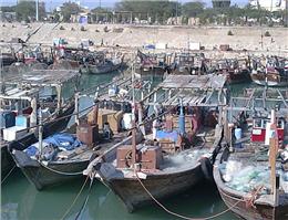 سهم 38درصدی هندیجان از صید آبزیان دریایی خوزستان