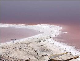 توقف احداث سد جدید، اولین گام برای نجات دریاچه ارومیه