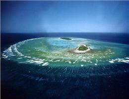 خطر نابودی بزرگترین جزیره مرجانی جهان