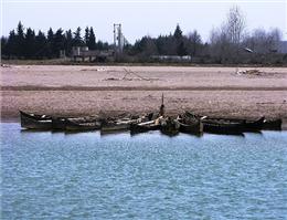قایقرانی در سفیدرود با شعار حمایت از محیط زیست