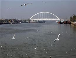 دبی رودخانه کارون افزایش یافت