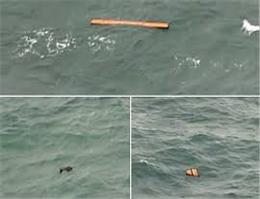 كندی عملیات جستجوی هواپیما AirAsia به دلیل بدی هوا