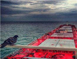 بازار کشتیرانی در فوریه 2018 شیب نزولی به خود گرفت