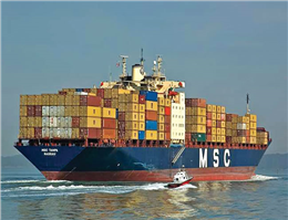 MSC Oliver and MSC Maya join idle fleet