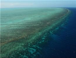 سایت جدید مرجانی چابهار میزبان گردشگران