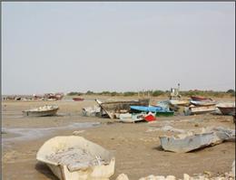 قایقهای صیادی در جزیره شمالی گناوه خسارت دیدند