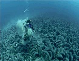 آلودگی به اعماق اقیانوسها رسید