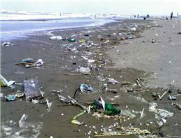 اعتبارات محیط زیست دریایی ناچیز است