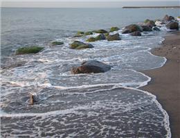 اجرای طرح الگوی سالمسازی دریا در آستارا