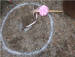پروژه توریسم دریایی «آرمان طبیعت » در بندر گز کلنگ زنی شد