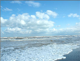پروتکل حفاظت از تنوع زیستی دریای خزر امضا شد